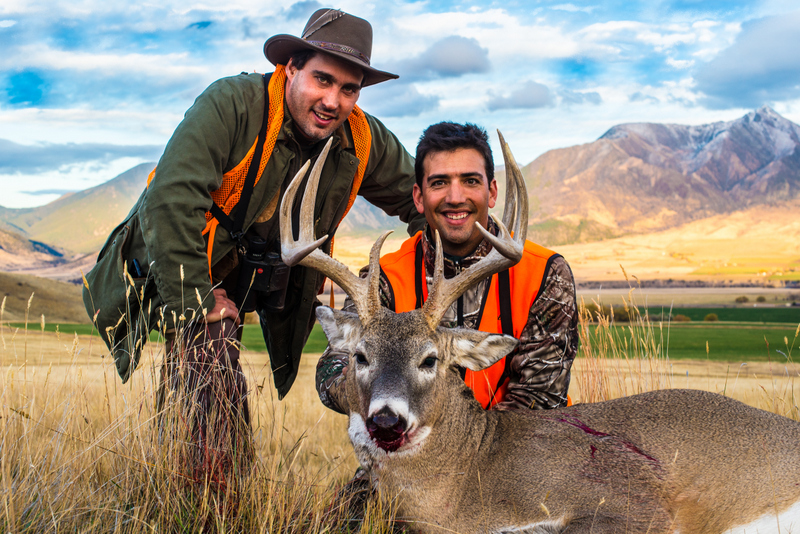 Two hunters with large deer